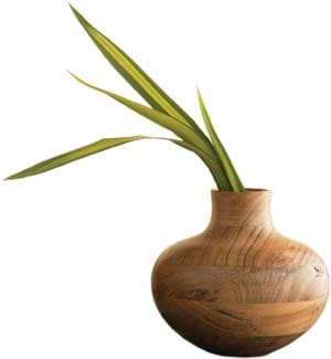 A cousin of teak, the sustainable Indian desert kikar wood of this swirled vase bears trademark variations of texture and grain patterns. The turned, gourd-shaped vases come in three sizes with a removable glass insert on the inside and a warm, rich luster on the outside; $49-$89. (800) 233-6011