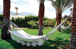 The lawns and gardens of Parker Palm Springs include hammocks for sunbathers, readers, and nappers.