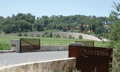 A road leading to Quintessa, built into the hills, takes visitors right to the crush pad over the winery's fermentation tanks.
