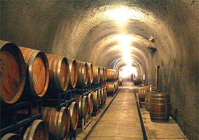 Cottonwood Canyon Vineyard & Winery offers the only public cave tours in Santa Barbara County.