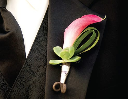 A pink calla lily trios with a curl of lily grass and a succulent from which it seems to grow (Artisan).