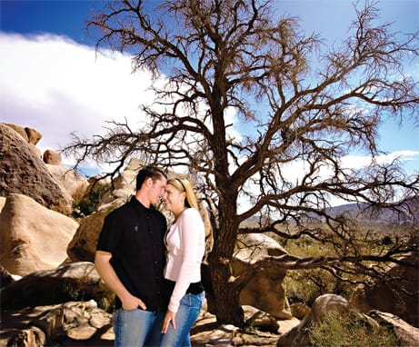 The desert area teems with trails for walking, hiking, and just enjoying the view in wild and rustic Joshua Tree National Park.