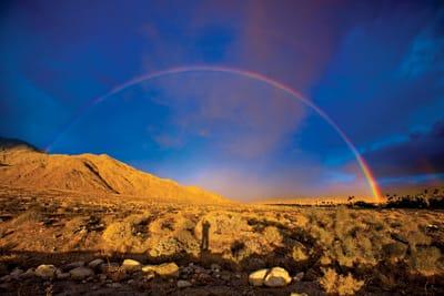 Into the Wild - the  Santa Rosa and San Jacinto mountains