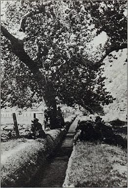 Picnickers enjoy the shade of the cottonwood tree beside the murmuring waters of the Tahquitz ditch. McCallum improved this ditch that was originally built by the Indians. He went on to build the Whitewater ditch that spanned 19 miles and cost $60,000.