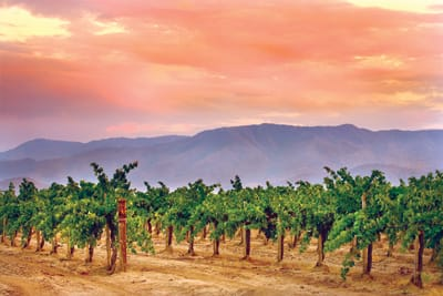 """A recent Dayton Daily News article said, """"Temecula may well be the most enjoyable California wine country you've never heard of."""" But for the population within driving distance, the area's charms are no secret."""