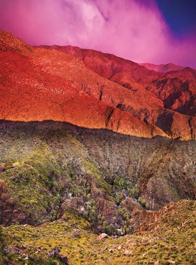 The Indian Canyons divide the Santa Rosa and San Jacinto mountain ranges and boast the largest grove of wild palm trees in the world — a destination and inspiration for many authors, musicians, photographers, and painters.