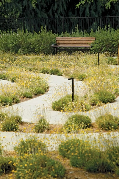 Visitors to Sunnylands may sit and enjoy the contemplative ambiance of the landscaped labyrinth.