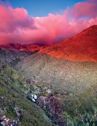 Andreas Canyon in the San Jacinto Mountains