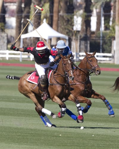 Polo and Wine: A Natural Desert Delight