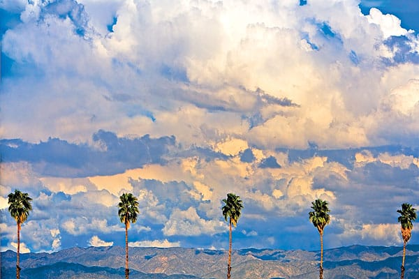 This image of the palms along Tahquitz Canyon Way near downtown Palm Springs was taken in late afternoon as clouds were dispersing following a storm. Dorothy stood along the road facing north to capture this composition with the mountain backdrop.