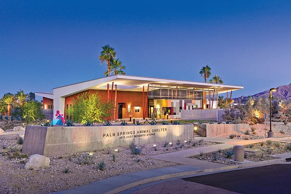James Cioffi, working with Swatt Miers Architects, designed the Palm Springs Animal Shelter, which features slanted rooflines and a horizontal bris de soleil. Like Albert Frey's roof at Palm Springs City Hall, the shelter's extended roof includes holes through which palm trees poke through to the sky.