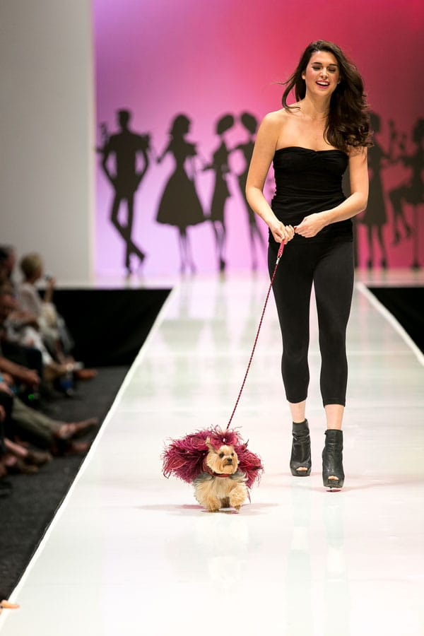 Fashion Week El Paseo™ presented the second annual Le Chien Couture Fashion Show, Saturday, March 16, 2013. Attendees saw large and small, pedigree and mutt strutting their stuff on the Fashion Week runway in the Big White Tent. The doggie models were all be decked out in the latest spring fashions by dog couture designer Linda Higgins.