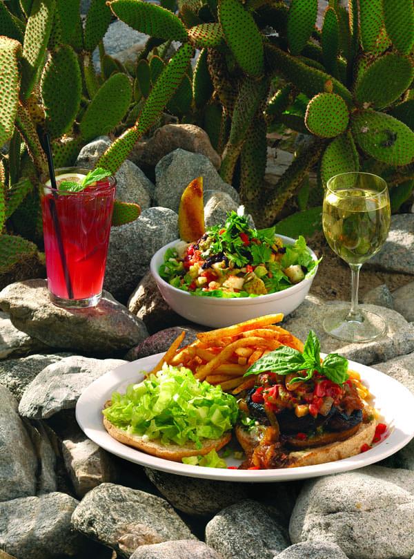 Best Vegetarian Restaurant - Native Foods