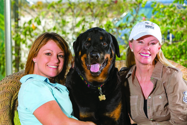 Trainer Lori Carman of Dream Dogs and Malinda Bustos of the Humane Society of the Desert addressed Max's health and behavior problems to make him more desirable for adoption.