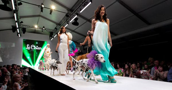 Le Chien - A Celebration of Dogs & Fashion - SUNDAY, MARCH 16, 2014