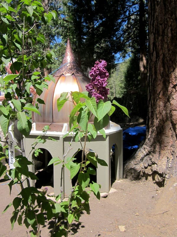 Idyllwild Lilac Tour Shows Off Beauty of Flower