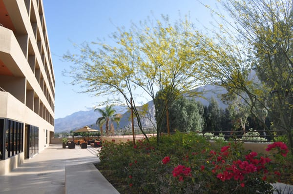 Hyatt Palm Springs Changes Name, Reaffirms Community Roots