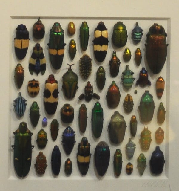 This inset of a framed piece zooms in on the colored beetles and other crawly things from Insight West in Rancho Mirage.