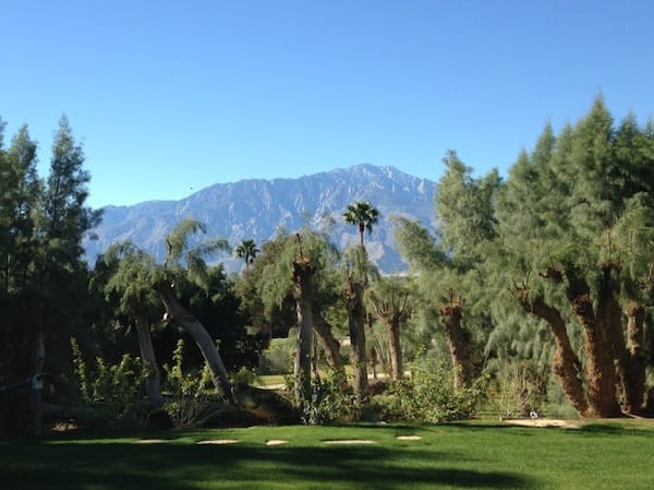 View of the Little San Bernardino Mountains from the lawn behind Essence.