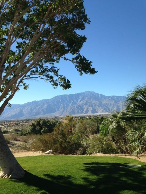 The view of Mt. San Jacinto and the windmills from the conference center at Two Bunch Palms.