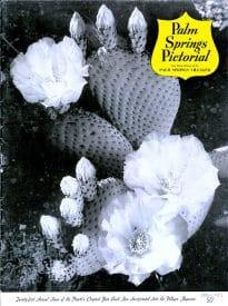 Palm Springs Villager magazine - November 1951
