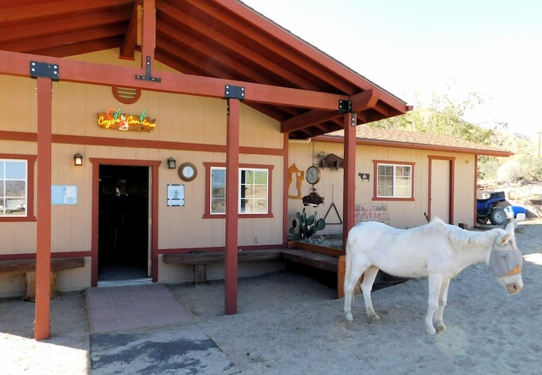 Coyote Ridge Stables