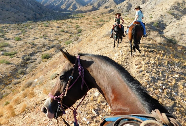Palm Springs Horseback Riding