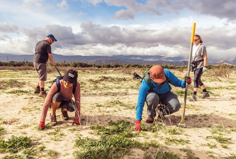 Earth Day clean up crew at Joshua Tree National Park