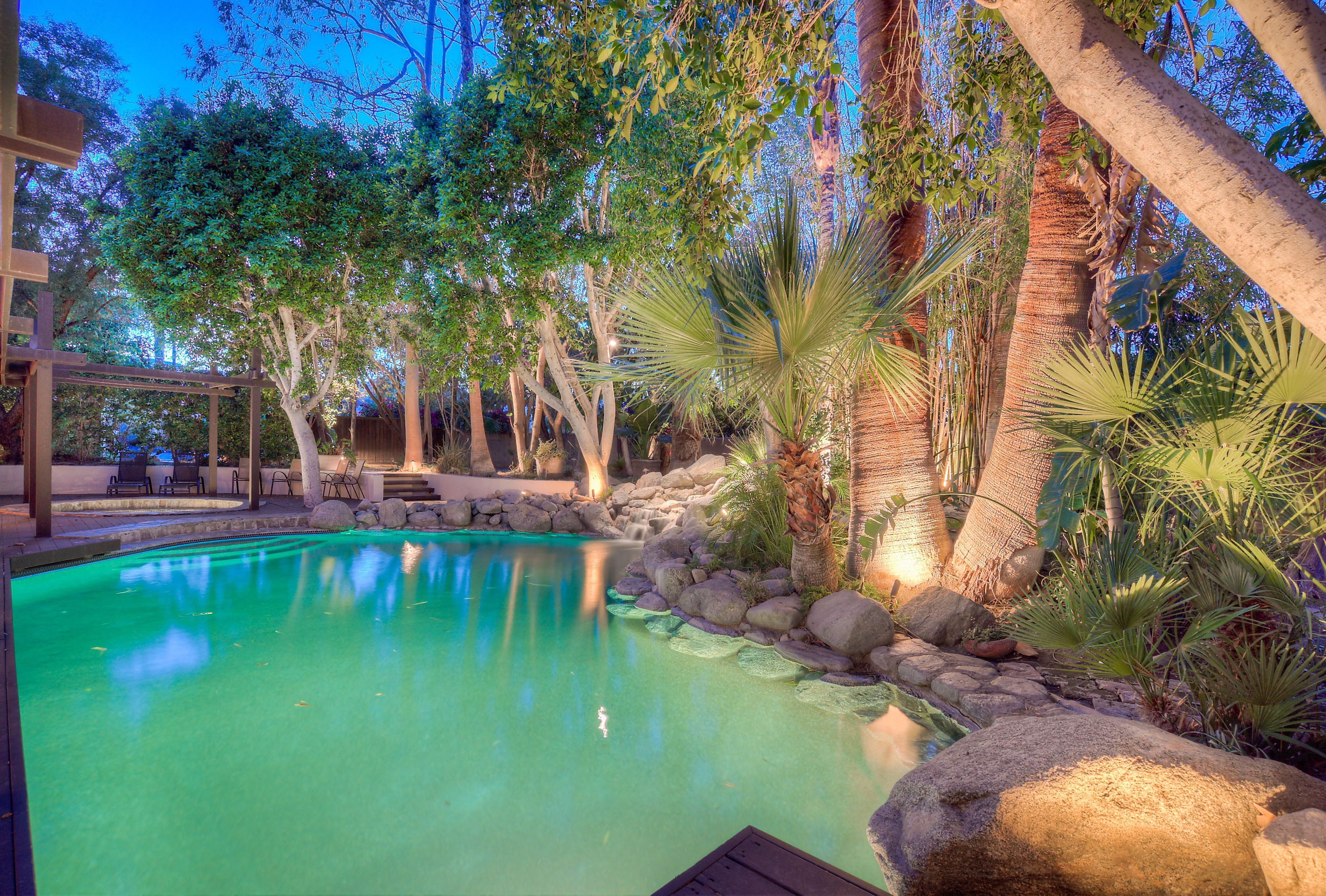 Desert Tropics