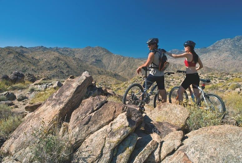 Riders on mountain biking trail.