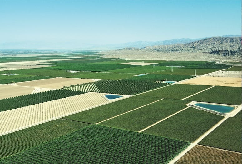 Palm Springs - Coachella Valley farming | How Green is Our