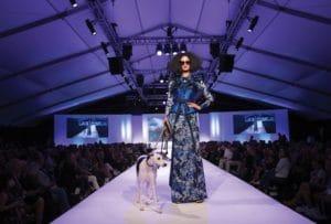 Le Chien Fashion