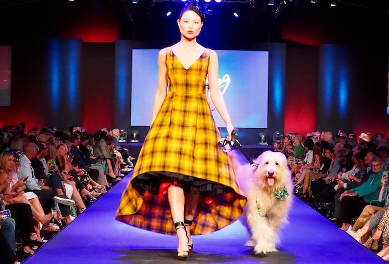 Stylish Canines Own the Runway at Fashion Week El Paseo