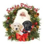 Santa Paws 5k Benefiting Guide Dogs of the Desert
