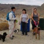 Happy Tails Dog Adventure at La Quinta Cove at La Quinta Cove Parking Lot