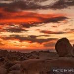 "Desert Institute Presents Women's ""Get-Away"" Weekend at Joshua Tree National Park Visitor Center"