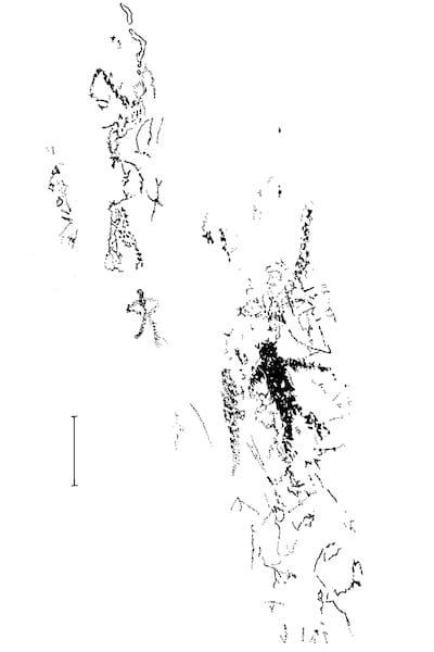 pictograph sketch