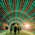 Things to Do This Week, Dec. 23-29