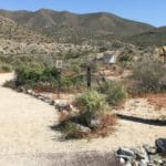Thursday Morning Hike at the Santa Rosa & San Jacinto Mountains National Monument Visitor Center in Palm Desert