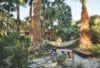 desert hot springs hotels