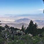 Palms to Pines: Life Zones of Coachella Valley & the San Jacinto Mountain at Santa Rosa & San Jacinto Mountains National Monument Visitor Center