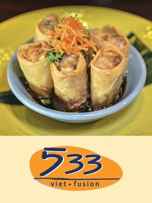 533 Viet Fusion