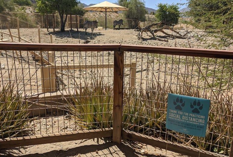 the living desert reopens