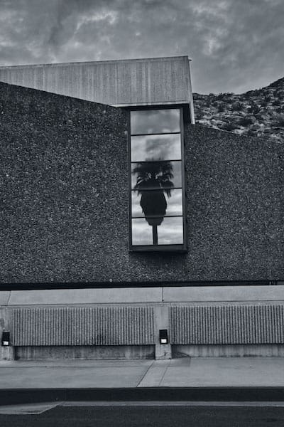 palmspringsartmuseum