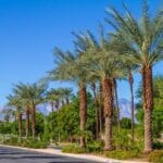Indian Wells Ranks Among Top Places to Retire