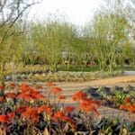 Sunnylands Center & Gardens is Open Art Garden for Peaceful Walks and Exploration of Desert Plants