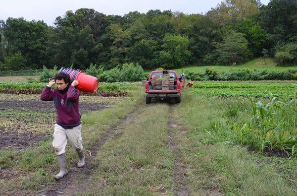 seasonsofchangeonhenrysfarm