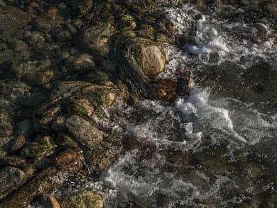 whitewaterriverpalmsprings