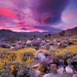 Lasting Impression: Andreas Canyon
