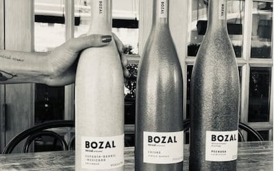 BozcalMezcal